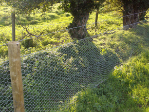 Rabbit Fencing from The Norfolk Stock Fencing Company