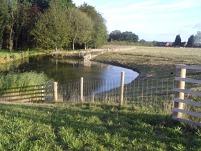 Norfolk Stock Fencing Stock Fencing